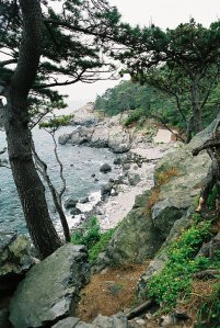 another picture of the dongbaek island park wooden walkway with more rock formations