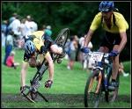 Bike crash photo