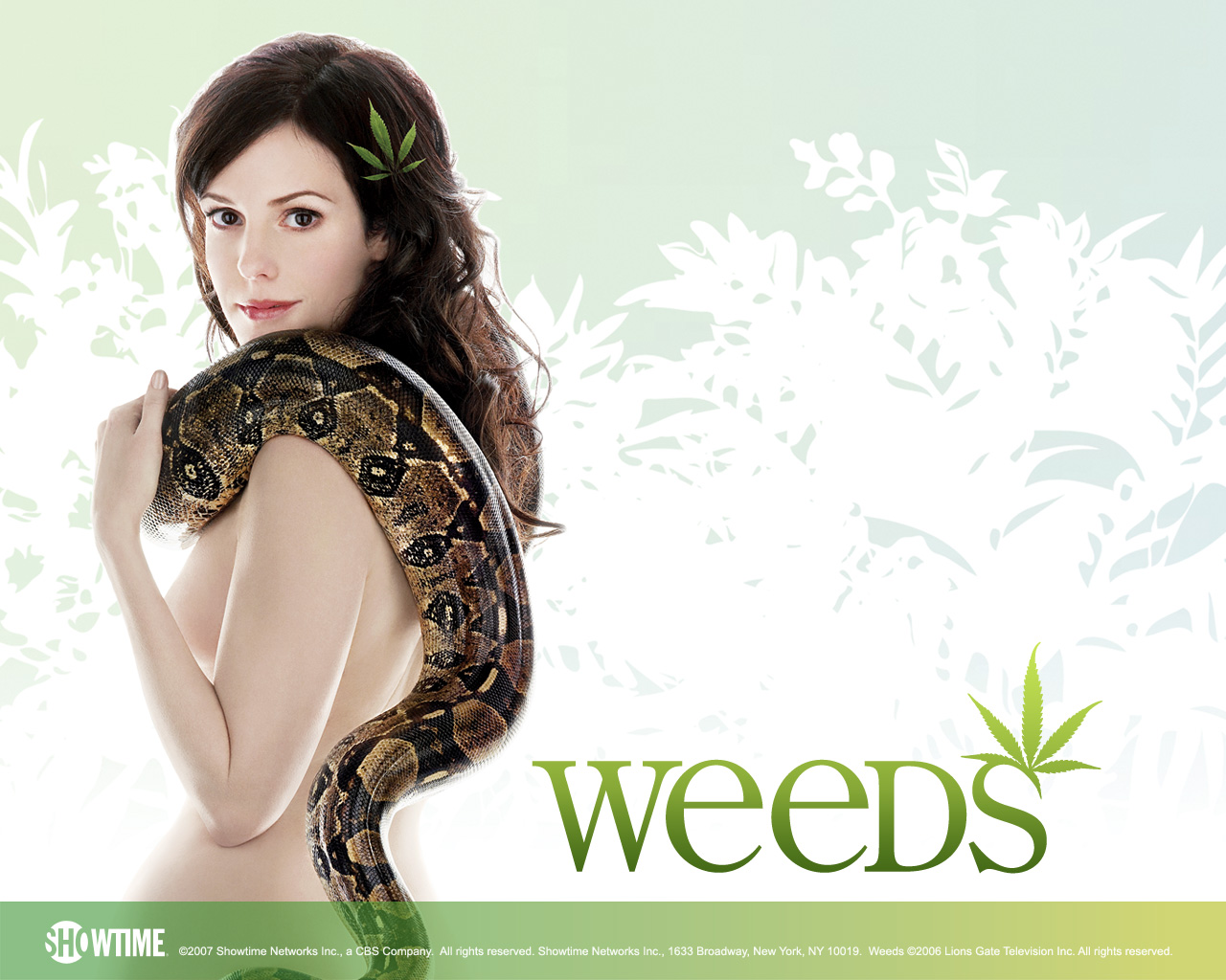 http://therealsouthkorea.files.wordpress.com/2009/01/weeds.jpg